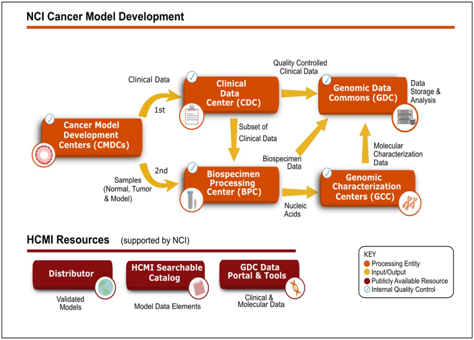 NCI Cancer Model Development Flowchart