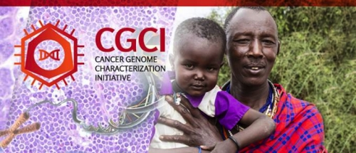 Cancer Genome Characterization Initiative Banner. Links to Program Page